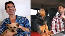 Pitchy, dawg: Singing dog wows Simon Cowell during remote 'AGT' auditions