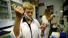 Oramed working on first insulin pill for diabetes