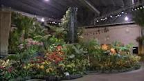 The Philadelphia Flower Show is in bloom