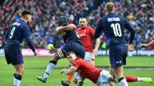 Scarlets to host two Wales rugby Tests