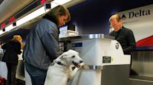 Sick of soiled cabins and biting, Delta wants proof that support animals are trained