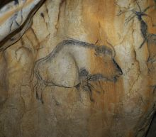 Mysterious Bison Hybrid Revealed from Ancient DNA and Cave Paintings