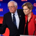 Donald Trump fears only one Democrat: Warren Sanders
