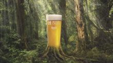 Heineken unveils new H41 beer