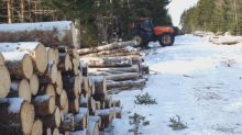 Forestry consortium combats criticism from private woodlot owners