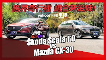 【動力玩家】跨界奇行種、組合新滋味!Škoda Scala 1.0 vs Mazda CX-30