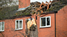 Man devastated after 'dangerous' tree he tried to get felled for 30 years crashes into his house