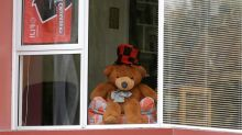 New Zealand embraces teddies to help make lockdown bear-able