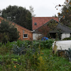 The owner of the Dutch farmhouse where a man and 6 young adults were found living in isolation said she had no idea they were there