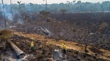 Feds pushed to abandon trade talks with Brazil over Amazon deforestation