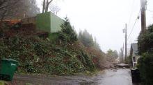 Mudslide forces evacuation of 6 homes in Burnaby's Westridge neighbourhood