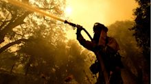 The California wildfires aren't just bad news for wine—weed is in danger, too