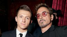 Robert Downey Jr., Tom Holland Promise Gifts to Boy Who Saved His Sister From Dog Attack