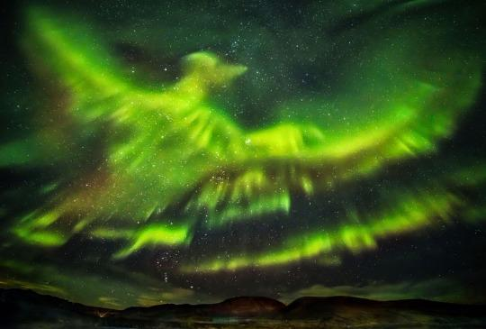 Beautiful Phoenix Snapped In Stunning Northern Lights Image