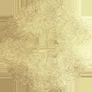 Taurus Daily Horoscope – July 4 2020