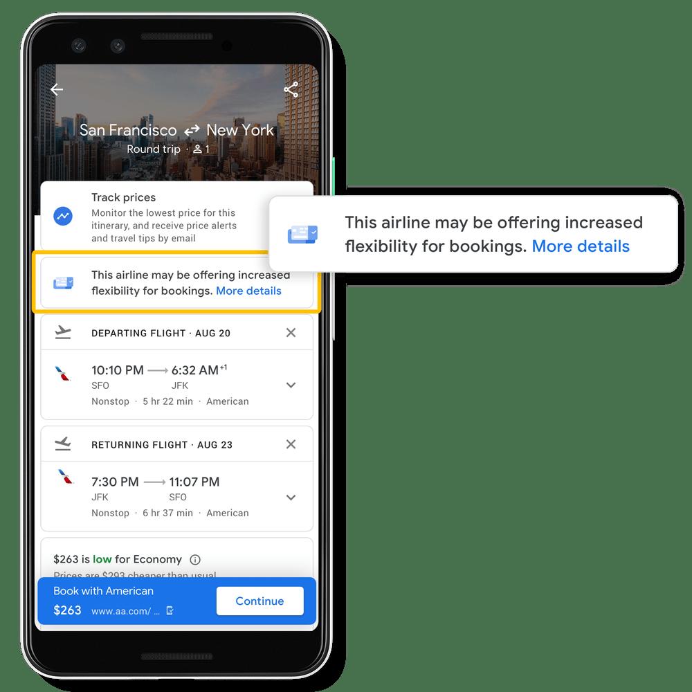 Google Travel Advisories
