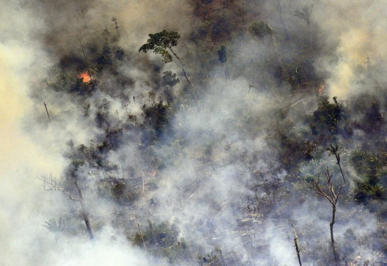 Images of smoke-filled horizions from blazes burning out of control across the Amazon basin made headlines around the world earlier this year