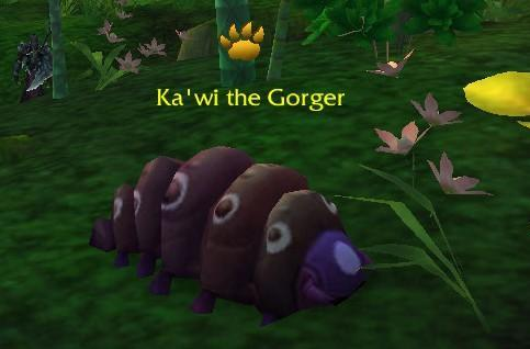 No experience multiplier for Elite Battle Pets, working as intended