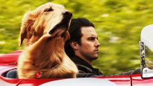 'The Art of Racing in the Rain' stars Kevin Costner as a dog named Enzo