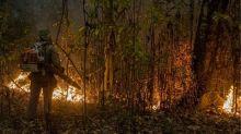 Os seis fatores que tornam incêndios no Pantanal difíceis de serem controlados
