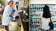 Lab-grown cat food soon to hit supermarket shelves