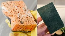 Mum's deceptively simple sponge cleaning hack wows