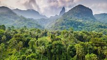 Is this the greenest island on Earth? The surreal lost world you've never thought to visit