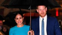 Prince Harry and Meghan Markle launch Archewell charity website