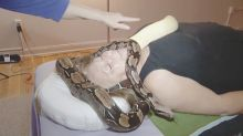 Can a snake 'massage' relieve your depression?