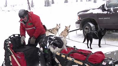 'Mushing Mortician' Explains Iditarod Sled Gear