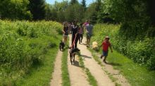 Families in Black Daddies Club bond over nature in Rouge Park hike