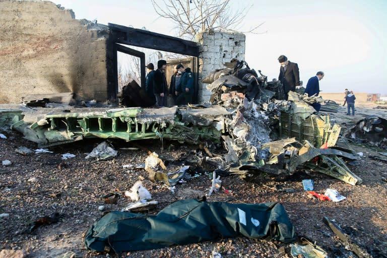 The Ukrainian plane went down near Tehran on January 8, killing all 176 people on board (AFP Photo/Rouhollah VAHDATI)