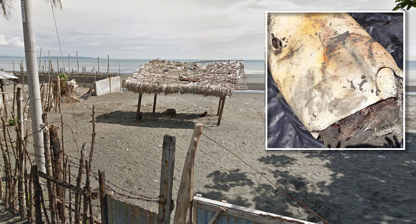 The sinister motive behind gruesome find on tropical beach