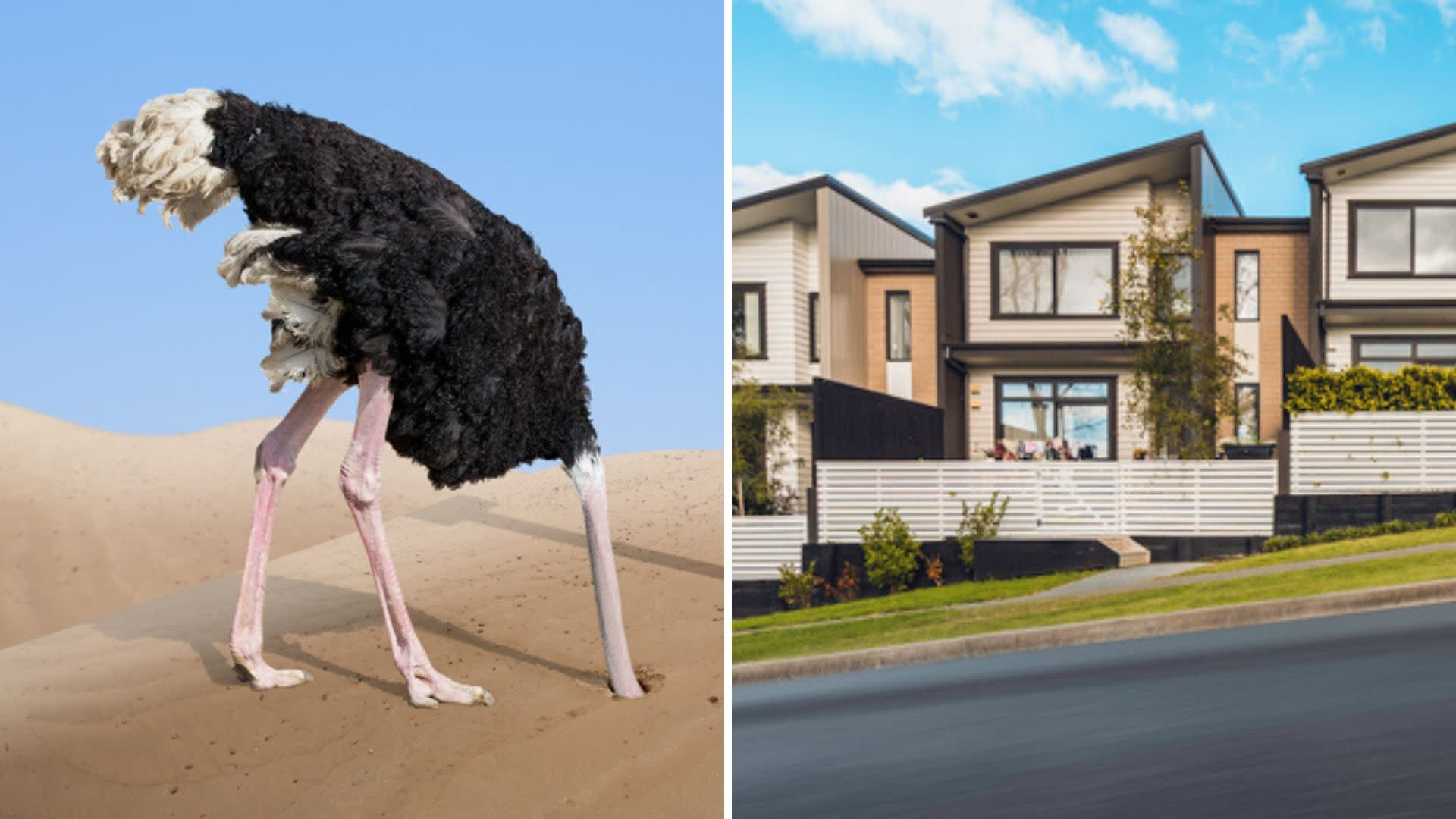 5 real estate myths you need to ignore