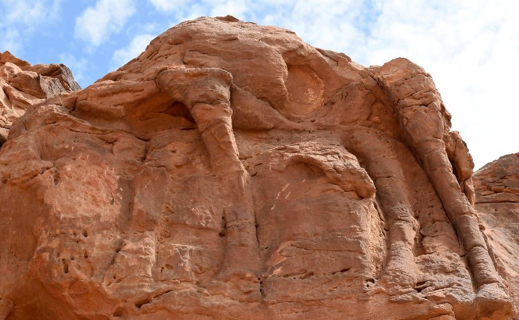 Rock art and mystery ancient camel sculptures in saudi desert