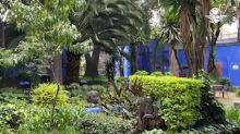 Museo Frida Kahlo en Coyoacán reabre sus puertas