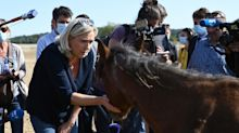 """Quand Marine Le Pen veut """"rassembler"""" autour de la protection animale"""