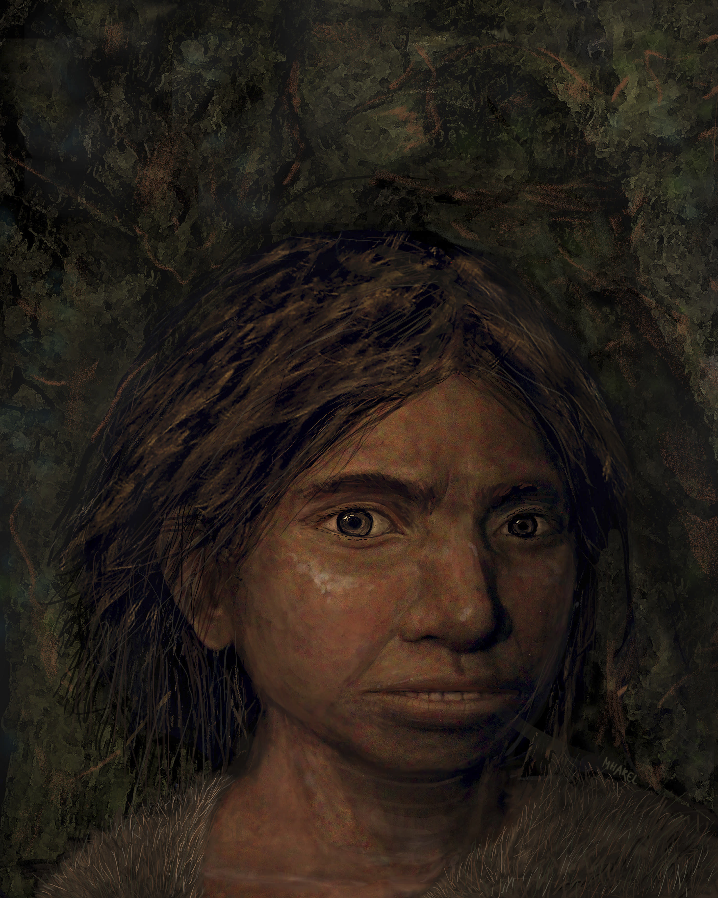 Scientists Reconstruct Skeletal Anatomy of Denisovans | Anatomy, Genetics, Paleoanthropology
