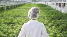 Aphria urges shareholders to wait as Green Growth officially launches offer