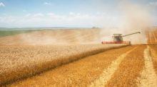 Daily Grains Analysis – Corn Breaks Higher Ahead of WASDE Report