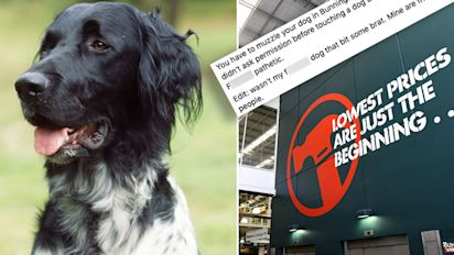 Outrage over Bunnings' 'pathetic' dog rule