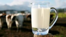 72 Hrs Before Trump Lands, SJM Warns Against 'Non-Veg' Milk Import