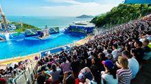 香港人的主題樂園 八十年代海洋公園四大回憶