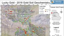 Wildsky Resources Inc. Identifies Gold Anomaly at Lucky Soil Grid