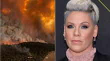 Pink Pledges $500,000 To Fight Australia Wildfires: 'I Am Totally Devastated'