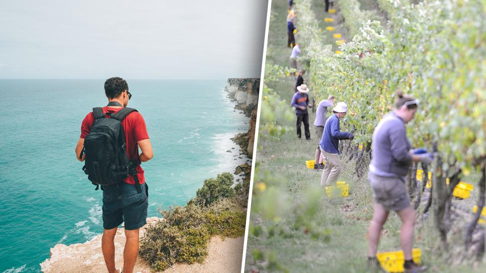 Why working backpackers will be able to stay in Australia for longer