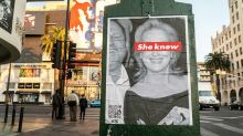 Right-wing artist admits he's behind Meryl Streep 'she knew' posters