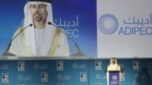 Oil producers to extend cuts to rebalance market: UAE