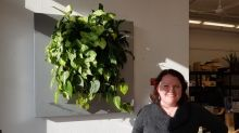 Tired of the February blahs, Manitoba? Try a living wall