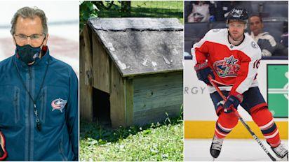 Domi latest to land in Tort's doghouse